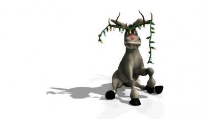 Rudolph The Donkey