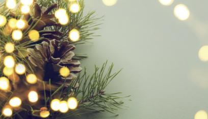 Holiday Pine Lights